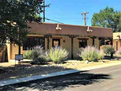 Taos Single Family Home Active-Price Changed: 321 Pond Court