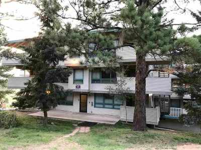 Angel Fire Condo Active-Price Changed: 38 Winterpark Lane 314
