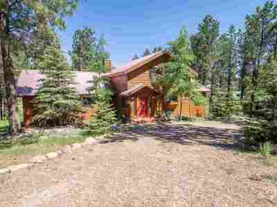 Angel Fire Single Family Home For Sale: 80 Spyglass Hill Rd