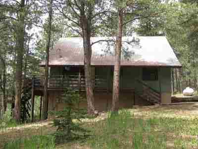 Angel Fire Single Family Home Active/Under Contract: 80 Onate