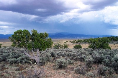 Taos Residential Lots & Land For Sale: Off Nm 567