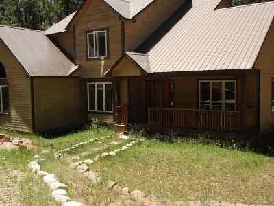 Angel Fire Single Family Home For Sale: 10 Birkdale Way