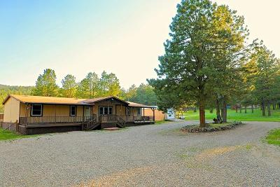 Angel Fire Single Family Home For Sale: 27 Pinecone