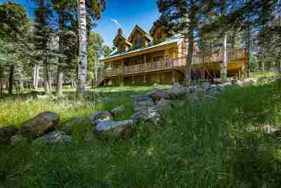 Angel Fire Single Family Home For Sale: 11 Sunrise Overlook