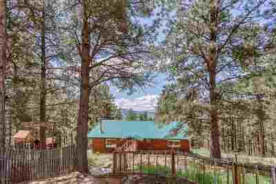 Angel Fire Single Family Home Active/Under Contract: 91 Country Club Rd