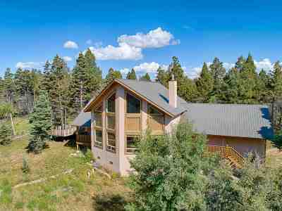 Angel Fire Single Family Home For Sale: 33 S Vail Overlook