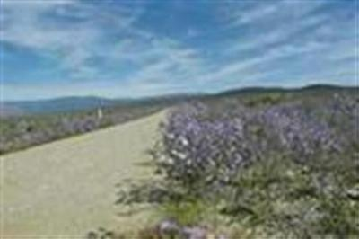 Taos Residential Lots & Land Active-Price Changed: Lot 3 Cielito Azul