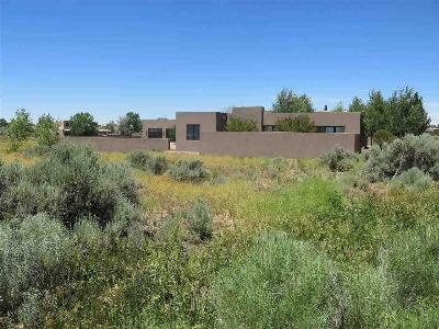 Taos County Single Family Home For Sale: 116 Upper Colonias Road