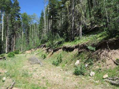 Red River Residential Lots & Land Active-Extended: Lot 43 Mountain Shadows
