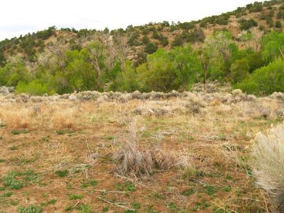 Taos Residential Lots & Land Active-Extended: Witt Road (End)
