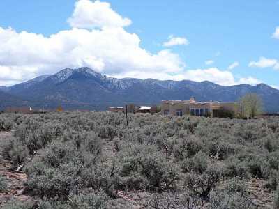 Taos Residential Lots & Land Active-Extended: Irish Rd. Irish