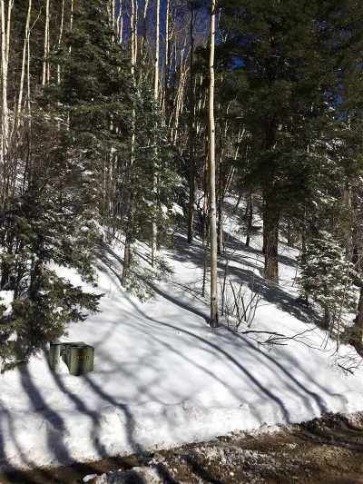 Taos Residential Lots & Land For Sale: 8 Coyote