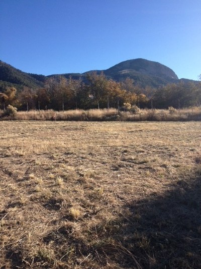 Taos Residential Lots & Land Active-Extended: 222 Las Olas Drive