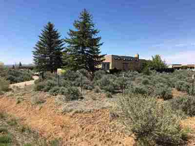 Taos Single Family Home Active-Extended: 245 Morgan Rd