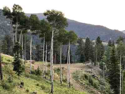 Red River Residential Lots & Land For Sale: 22 Spruce Trl