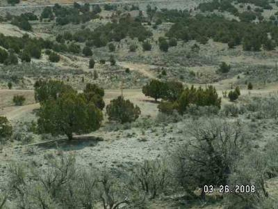 Residential Lots & Land For Sale: Elko Vista Drive