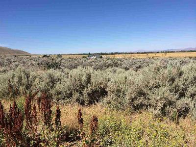 Lamoille NV Residential Lots & Land For Sale: $140,000
