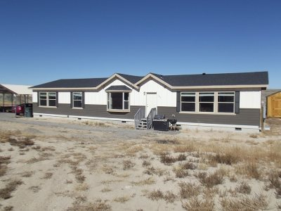 Spring Creek NV Single Family Home Sold: $235,000