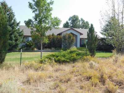 Spring Creek NV Single Family Home Sold: $229,500
