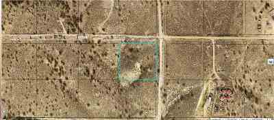 Elko County Residential Lots & Land For Sale: Lee Ave