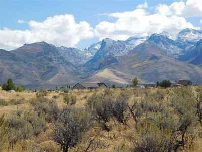 Spring Creek NV Residential Lots & Land For Sale: $44,000