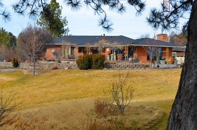 Elko County Single Family Home For Sale: 191 Skyline Dr