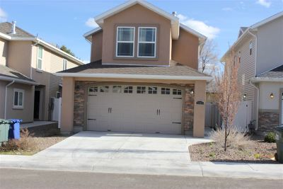 Elko Single Family Home For Sale: 1371 Arroyo Seco Circle
