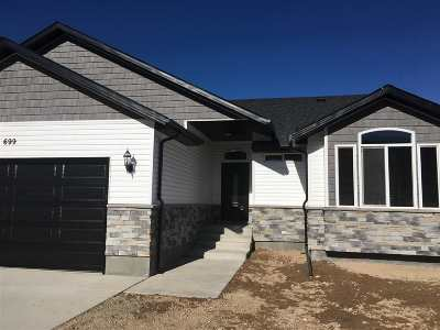 Elko Single Family Home For Sale: 699 Four Mile Trail