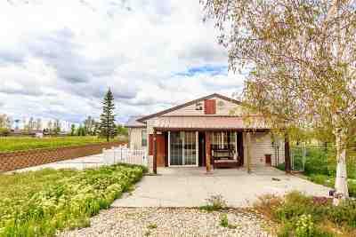 Elko County Single Family Home For Sale: 305 Diamond Lady Lane