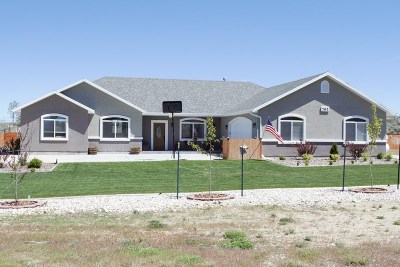 Spring Creek NV Single Family Home Under Cont-Contigencies: $274,900