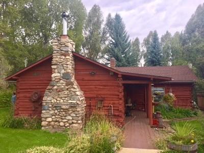 Lamoille Single Family Home For Sale: 1087 Deer Lane