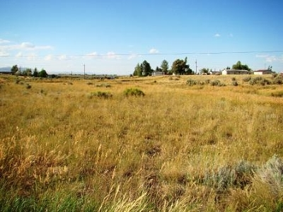 Spring Creek NV Residential Lots & Land For Sale: $17,000