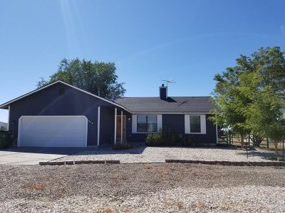 Spring Creek NV Single Family Home For Sale: $205,000