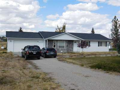 Spring Creek NV Single Family Home For Sale: $236,900