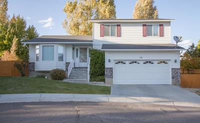 Elko Single Family Home Under Cont-Take Backups: 210 Timber Creek Ln