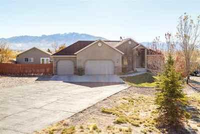 Elko County Single Family Home For Sale: 550 Shadybrook