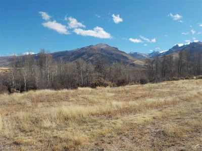 Spring Creek NV Residential Lots & Land Sold: $74,000