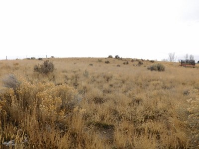 Spring Creek NV Residential Lots & Land For Sale: $35,000