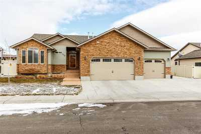 Elko Single Family Home For Sale: 206 Brookwood Dr