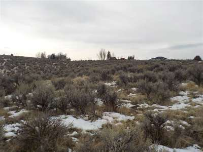 Spring Creek NV Residential Lots & Land For Sale: $47,000