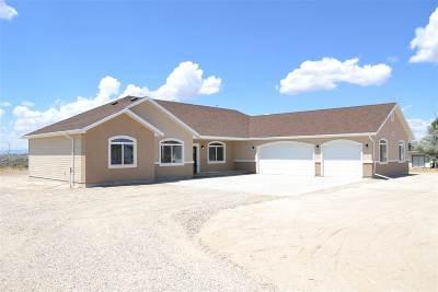 Spring Creek Single Family Home For Sale: 634 Shadybrook Drive