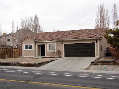 Elko County Single Family Home For Sale: 2460 W Tibbets Blvd