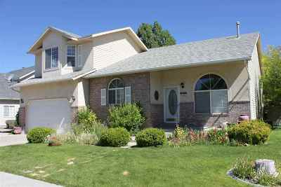 Elko Single Family Home For Sale: 242 Teal Way