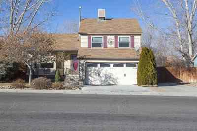 Elko Single Family Home For Sale: 647 Spruce Rd