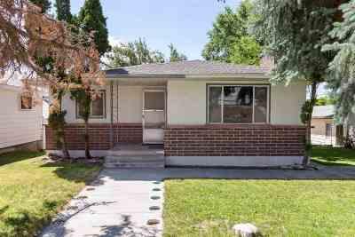 Elko County Single Family Home For Sale: 705 Bush St