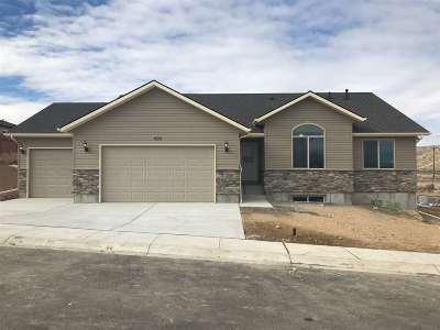 Elko County Single Family Home Under Contract: 603 Tasha Way