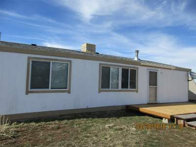 Elko County Manufactured Home Under Contract: 296 Rocking Chair Rd