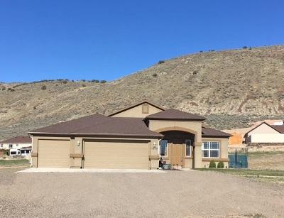 Elko County Single Family Home For Sale: 1835 Hamilton Creek Trl