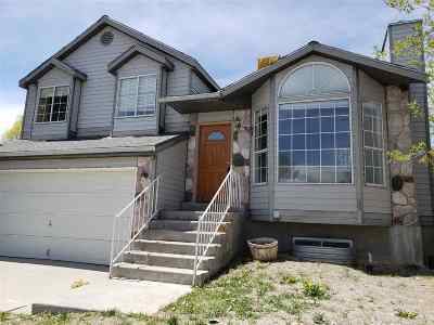 Elko County Single Family Home For Sale: 3537 Valley Ridge Ave