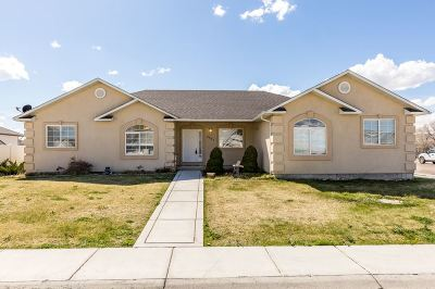 Elko County Single Family Home Under Cont-Take Backups: 3541 Ridgecrest Drive